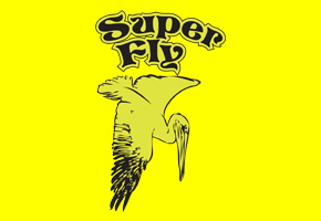 xanadu surfboards - super fly model