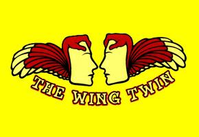 xanadu wing twin model