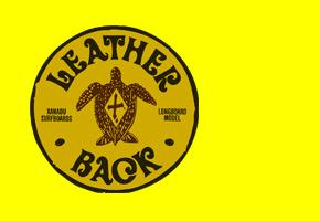 Xanadu - Longboard - Leatherback
